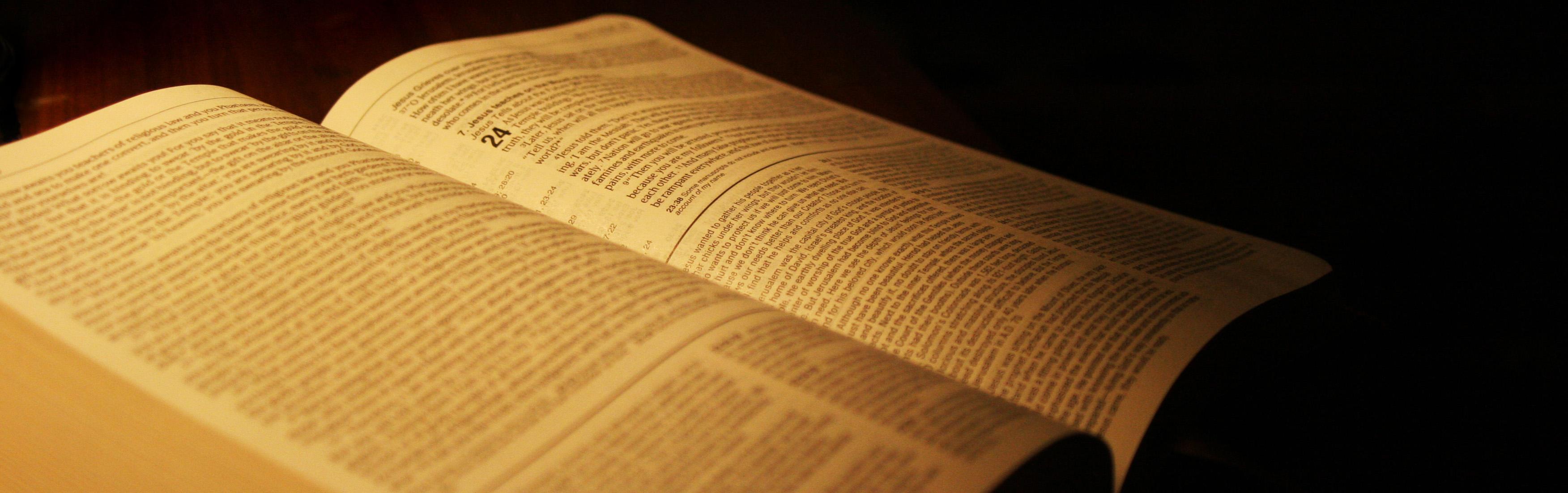 Biblia-Divina